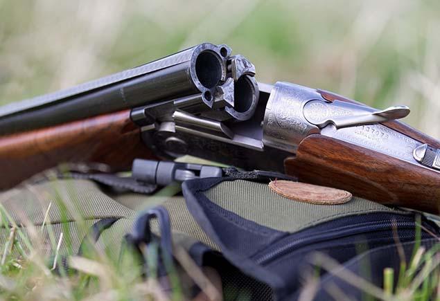 Виды ружей для охоты