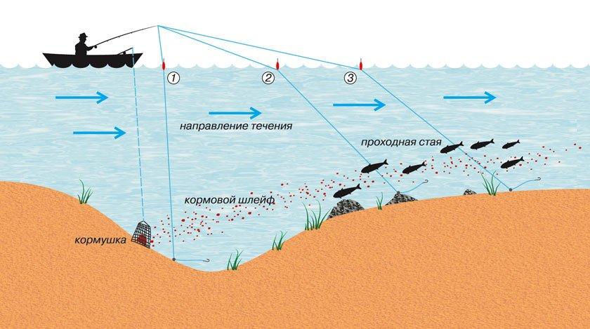 Как ловить леща и какие насадки применять для эффективной рыбалки